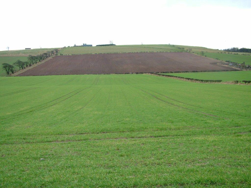 Flodden Field. Source: Wikipedia