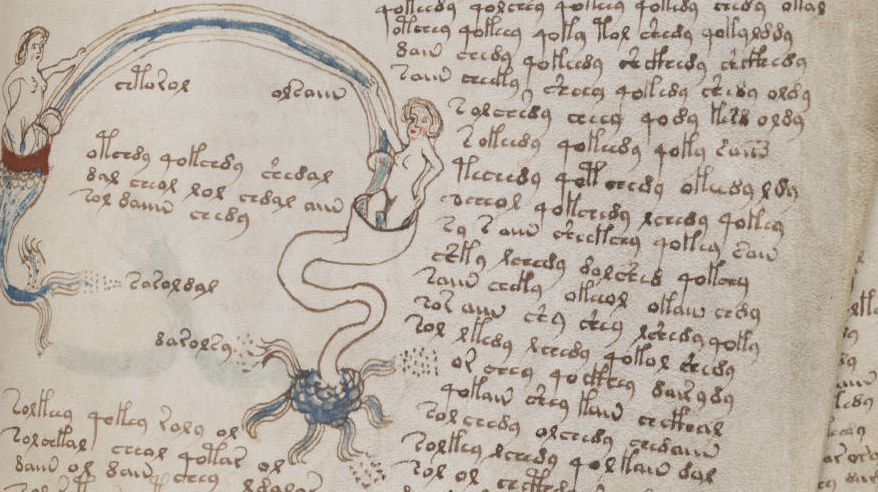 Detail from Voynich manuscript at bibliotecapleyades.net