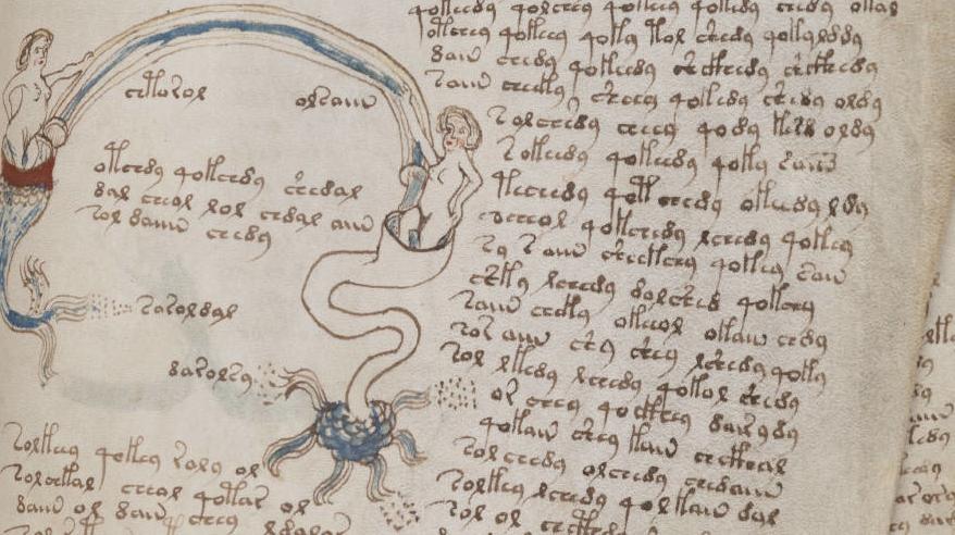 Detail from Voynich manuscript at bibliotecapleyades.net