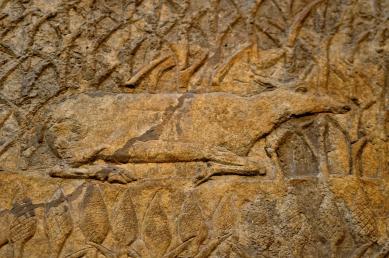 assyria5