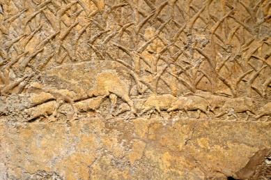 assyria6