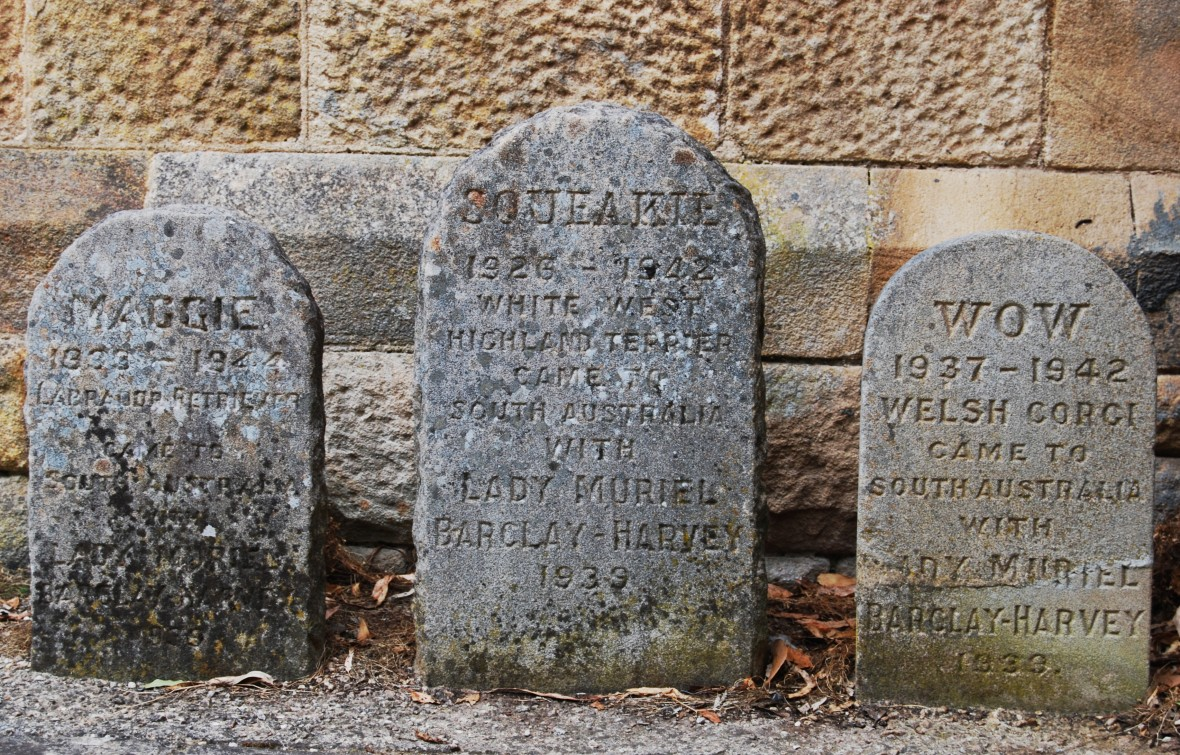 Pet_Gravestones_-_Marble_Hill